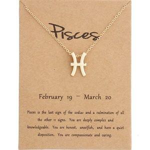 Pisces ♓️ Zodiac Necklace